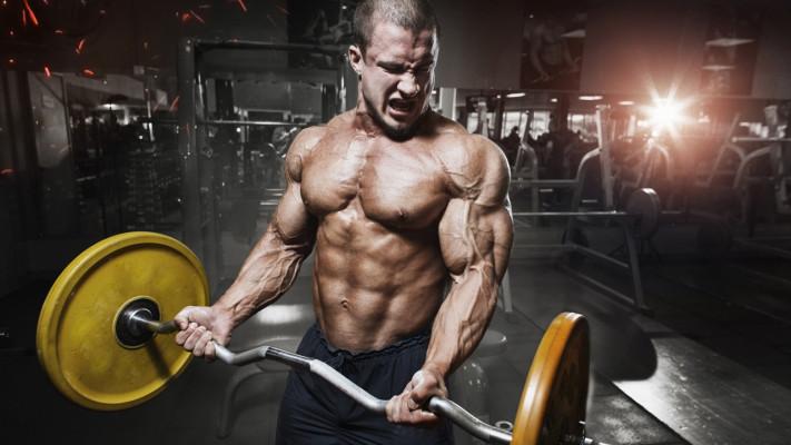 筋肉がつきやすいorつきにくい?マッチョが知っておきたい3つの体質