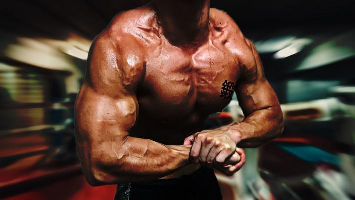 KTMの人生【鍛道】第6回「皆さんは憧れの体や、大きくしたい筋肉はありますか?」